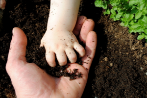 soil for future generations